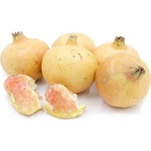 White Pomegranate سفید انار ۔